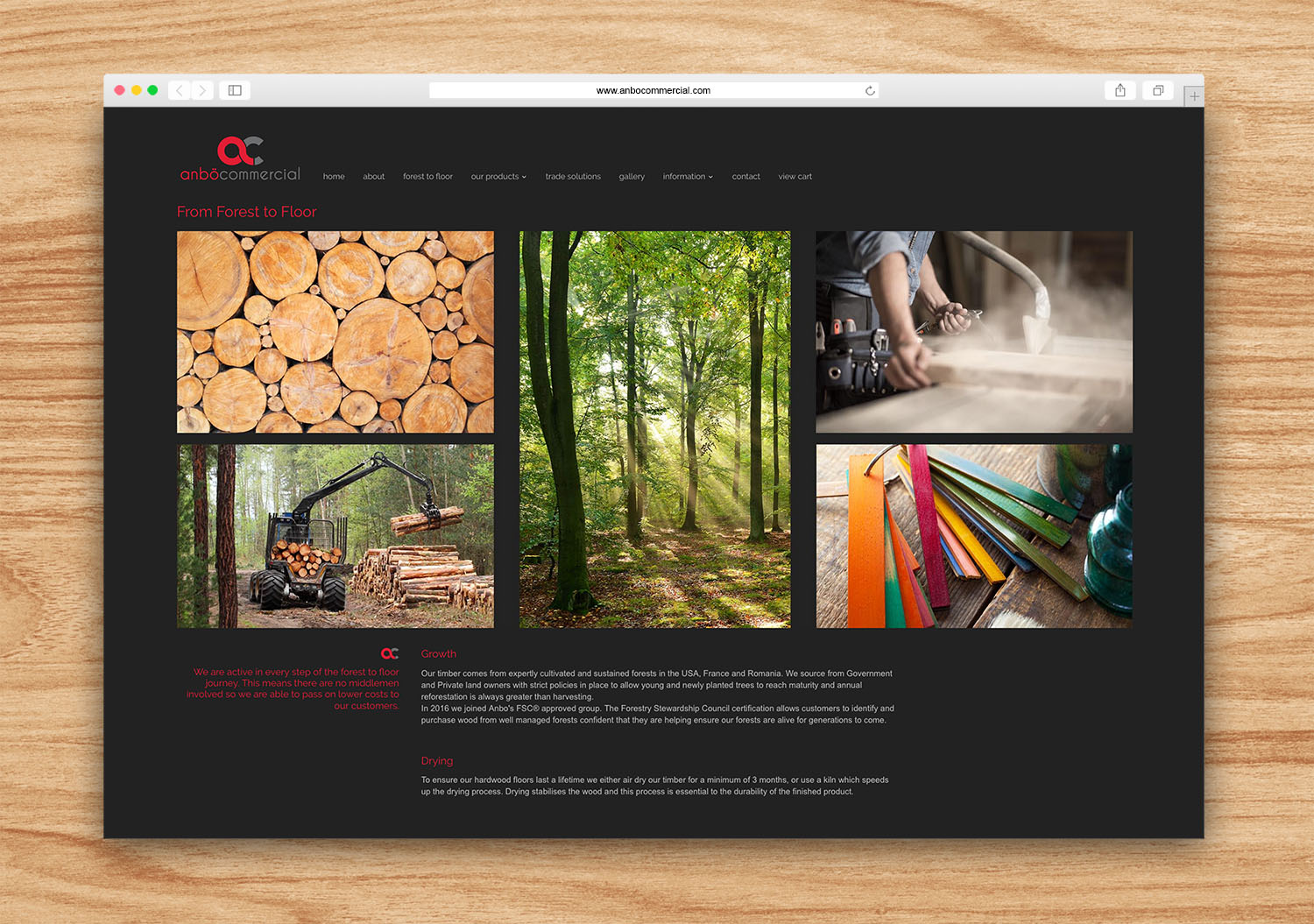Apricity Solutions Portfolio Anbo Commercial web forest to floor